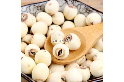 Fujian Lotus Seed 福建白莲子 Kacang Teratai 100g~500g-Mr.JANG YU